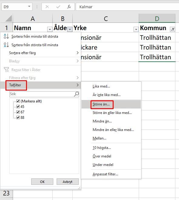 Filterfunktion i Microsoft Excel